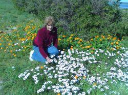 Gudrun in den Blumenfelder unserer Westküste1