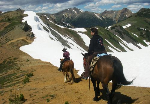 don't be afraid getting on a real mountain cayuse horse