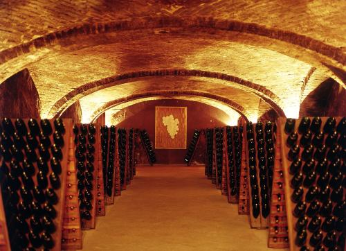 Weinkathedralen in Canelli