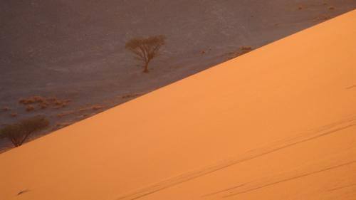 Soussvlei Sand dunes, Namibia