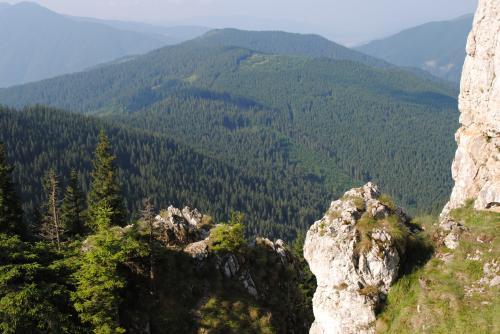 Landscape in Rarau