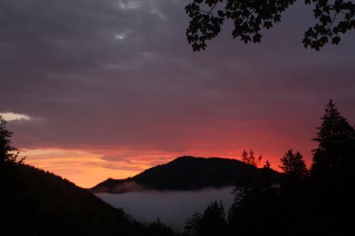 Sonnenaufgang in der Wildnis