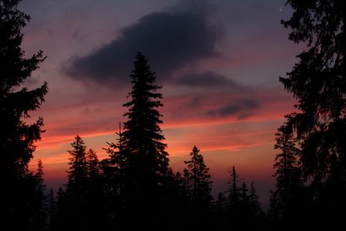Sonnenuntergang im Nationalpark Kalkalpen