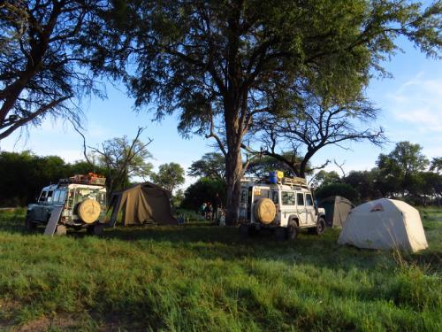 Campen am Khwai