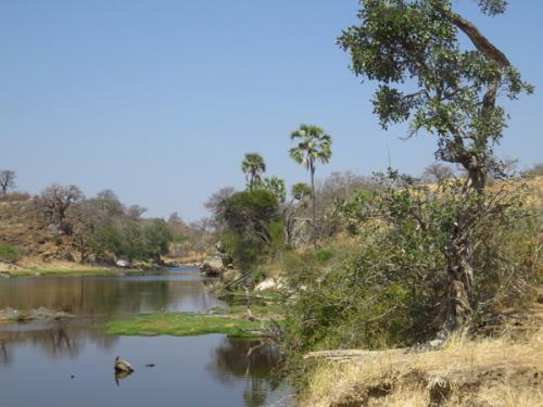 Ruaha Nationalpark