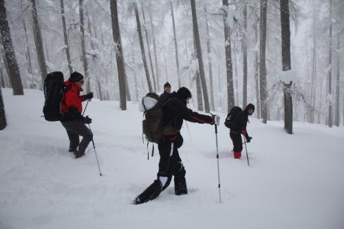Wir marschieren mit den Schneeschuhen durch traumhafte Winterlandschaften