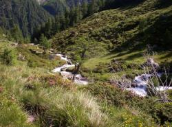 Bergbach im Unterengadin